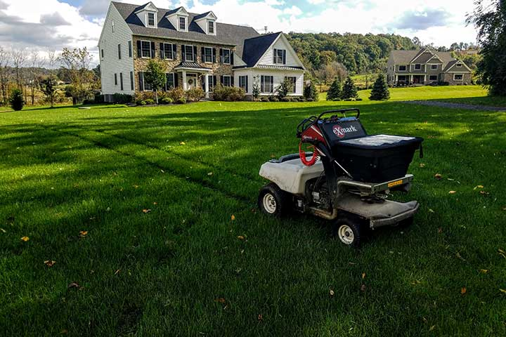 Home lawn in Allentown, PA with lawn care services.
