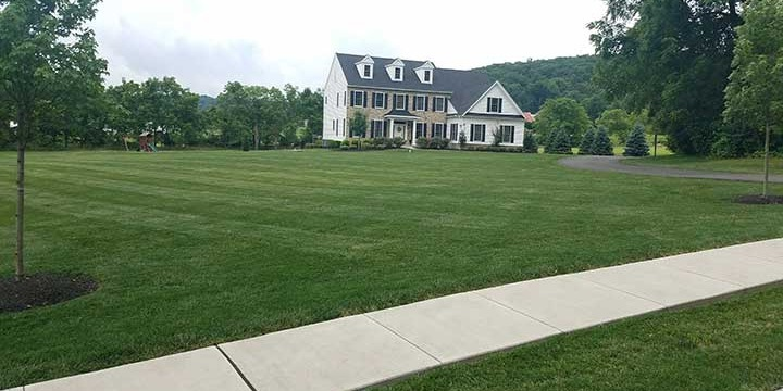 Recently mowed home lawn in Macungie, Pennsylvania.