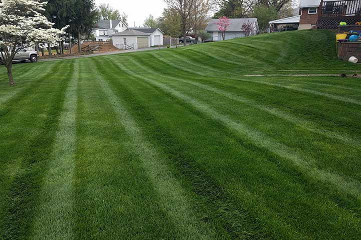Recently mowed home lawn in East Greenville, Pennsylvania.